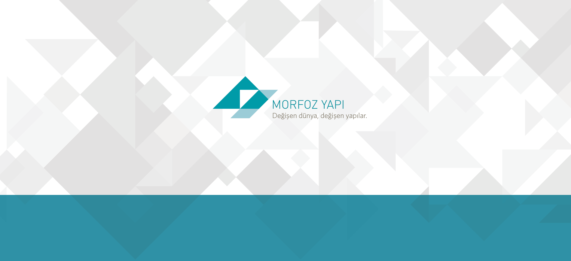 Morfoz_logo_plus_pattern